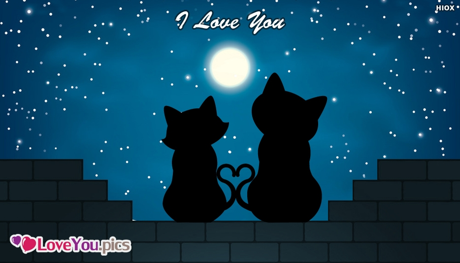 Cute I Love You Card With Cats