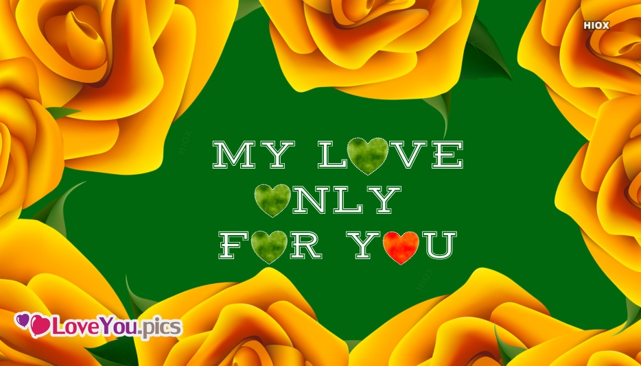 My Love Only For You