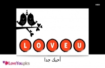 I Love You So Much In Arabic