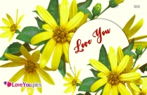 Love You Flower Wallpaper