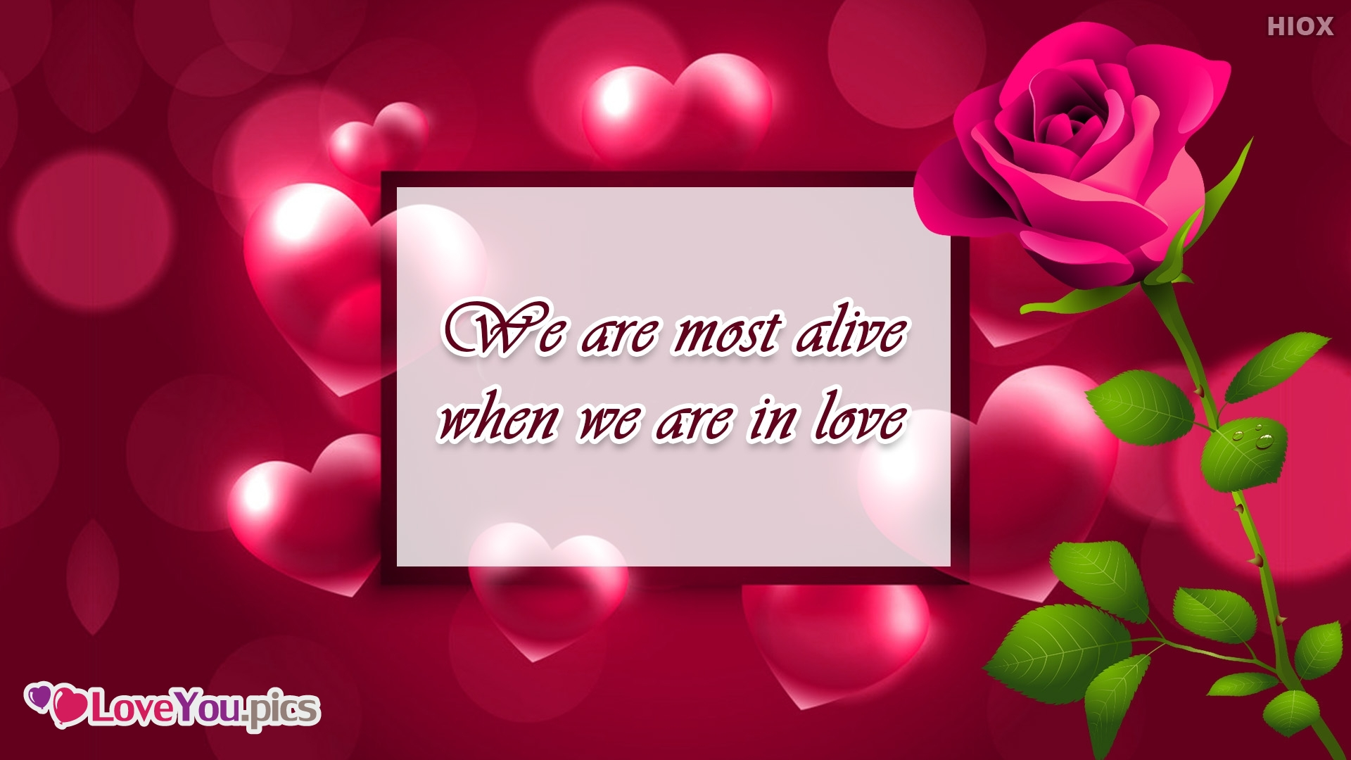 We Are Most Alive When We Are In Love.